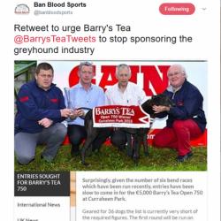 """Milioni di ex-patrioti irlandesi rimangono """"collegati"""" con la loro patria natale attraverso il """"the di Barry (Barry's Tea)""""."""