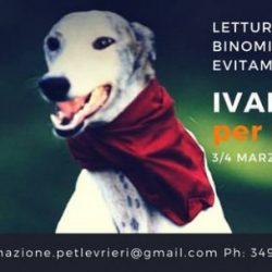 Ivano Vitalini per Pet Levrieri: Lettura del cane nel binomio