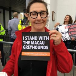 THANK YOU Pauline Mclynn! Actress and author Pauline Mclynn supporting #SaveTheMacauGreyhounds