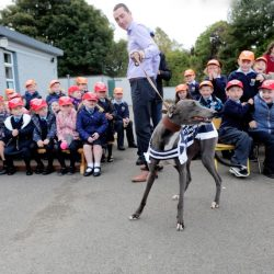 Pupils at a primary school in County Offaly are being encouraged to get involved in greyhound racing !
