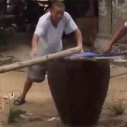 Video scioccante di un levriero bollito vivo in Cina – Attenzione immagini FORTI!