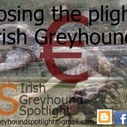 IGB: an organisation that uses live baiting, kills greyhounds, has issues with doping, rich sponsors with legal problems