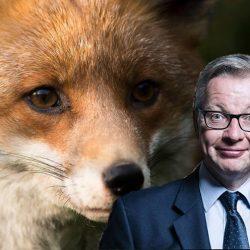 Brexit: che cosa cambia per gli animali di interesse economico (e non). Articolo tratto da Marchesini Etologia