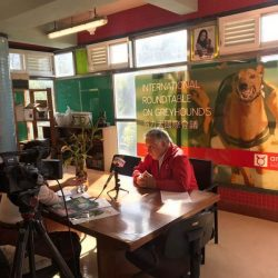 Albano Martins during the interview by Lotus TV in Macau #SavetheMacauGreyhounds