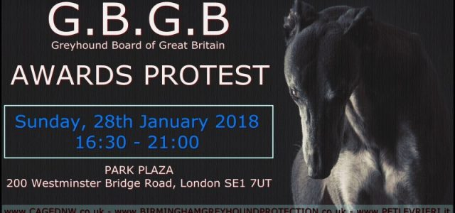 DIAMO VOCE AI GREYHOUND: PARTECIPATE INSIEME A NOI ALLA PROTESTA ANTIRACING INTERNAZIONALE DEL 28 GENNAIO A LONDRA