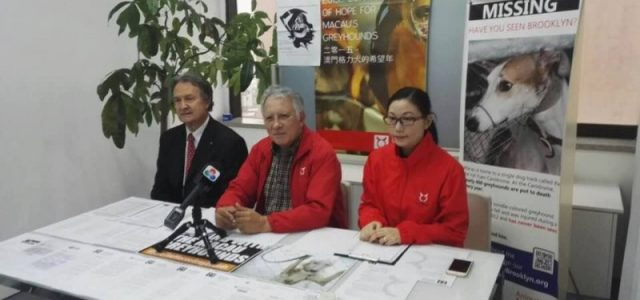 11/01/2018 – the Liaison Office of the Central People's Government in the Macau Special Administrative Region received Albano Martins and Anima Macau