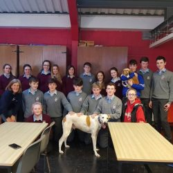 Two Galway SPCA staff members, accompanied by Stevie the terrier and Jacob the Lurcher in a school because the EDUCATION is KEY…
