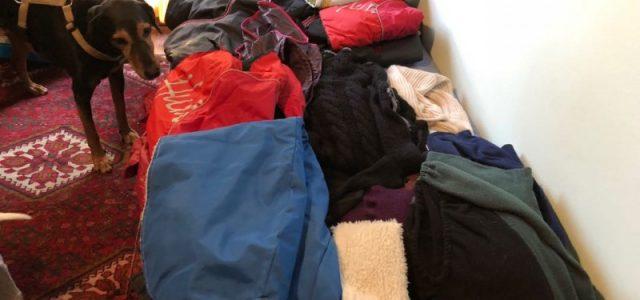 Tanti cappotti, maglioni e coperte per Scooby e i cani dei rifugi cinesi! Grazie a tutti!