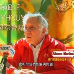 Albano Martins interviewed in English on Macau TV Lotus TV about how the only solution for the greyhounds is for them to go to Anima