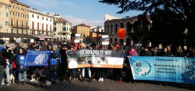 MORE THAN 1,000 ACTIVISTS AT THE PROTEST AGAINST HUNTING WITH GALGOS – VERONA, 4th February 2018