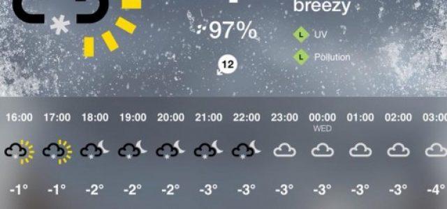 Piste da corsa di Sheffield: nonostante le gelide temperature e la neve, i cani avrebbero corso come da programma! Poveri cani!