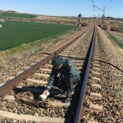 Identificato l'autore dell'uccisione di cani legati alla ferrovia