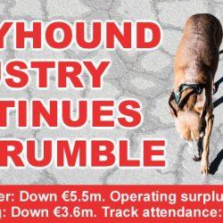 Irlanda – Nuovi incentivi IGB per sfruttare di più e più a lungo i greyhound
