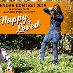 CALENDAR CONTEST 2019