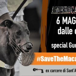 5 bands, 6 singers, 650 greyhounds to save – 6 May, Bergamo (Italy)