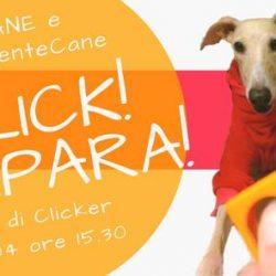 Domenica 22 Aprile. Click: S'impara. In collaborazione con Pet Levrieri.