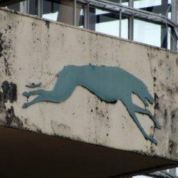 Ottima notizia – Nessun casinò al posto del Multnomah Greyhound Park, che verrà demolito.