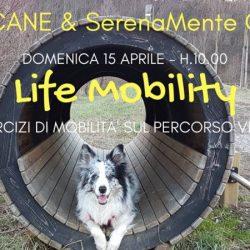 Domenica 15 Aprile. Life Mobility, in collaborazione con Pet Levrieri.